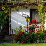 Comment aménager les plantes de votre jardin ?