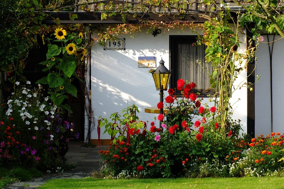 Comment am nager les plantes de votre jardin le blog for Amenager le jardin