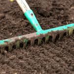 Comment préparer votre terrain pour semer votre gazon ?