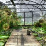 Comment créer un jardin exotique