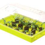 Comment réaliser vos semis en terrine ?