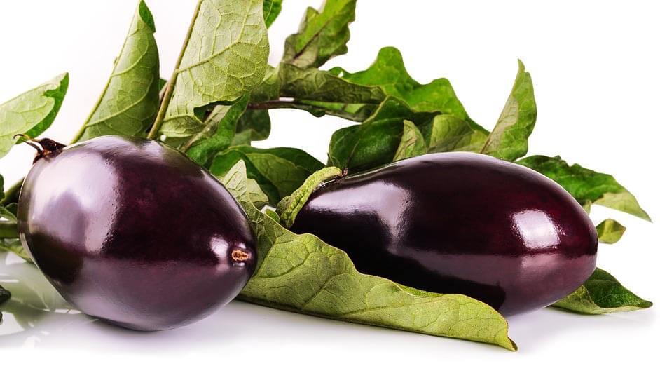 Tout savoir sur l'aubergine