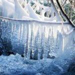 Qu'est-ce qu'une gelée ?