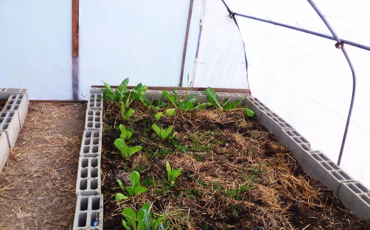 Comment Placer Des Dalles De Jardin comment fabriquer votre serre ? - le blog de jardinet.fr