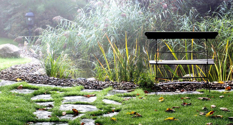 Entretenir son bassin en automne