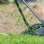 Utiliser les tontes de gazon