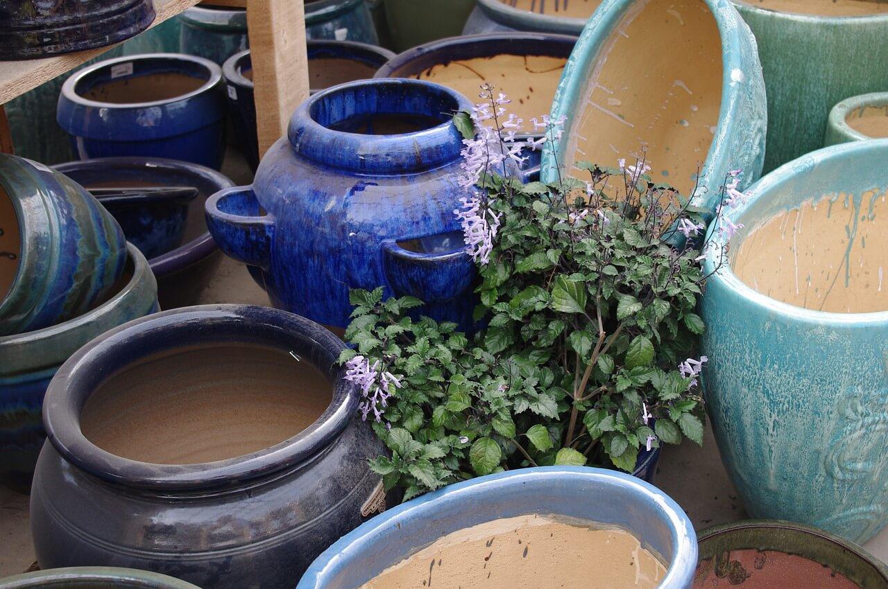 Entretenir bacs et jardinières
