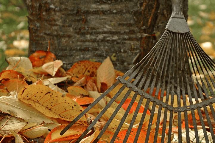 Outils et gestes pour ramasser les feuilles