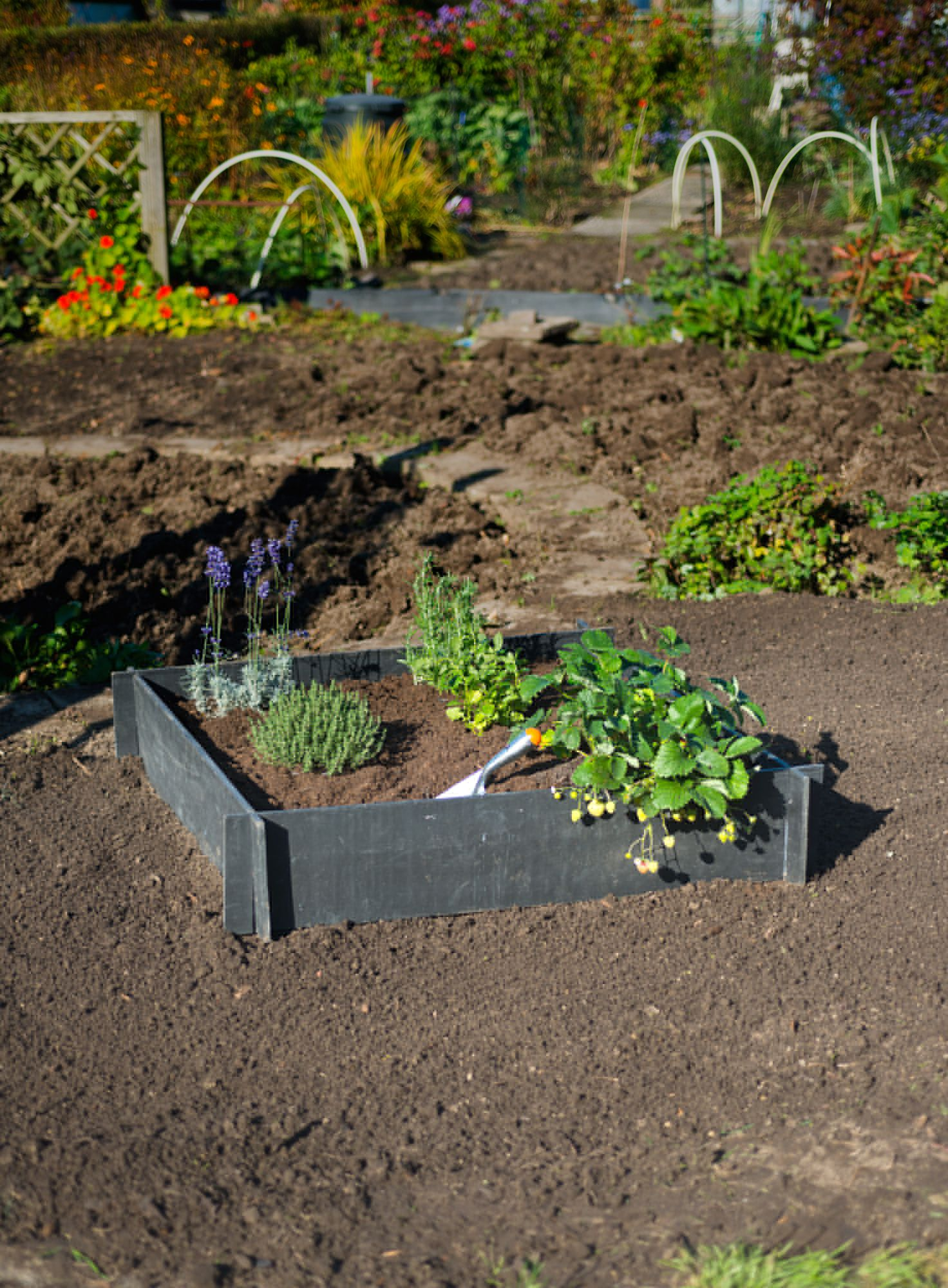 Carr potager en pvc recycl culture et plantation jardinet for Carre de potager