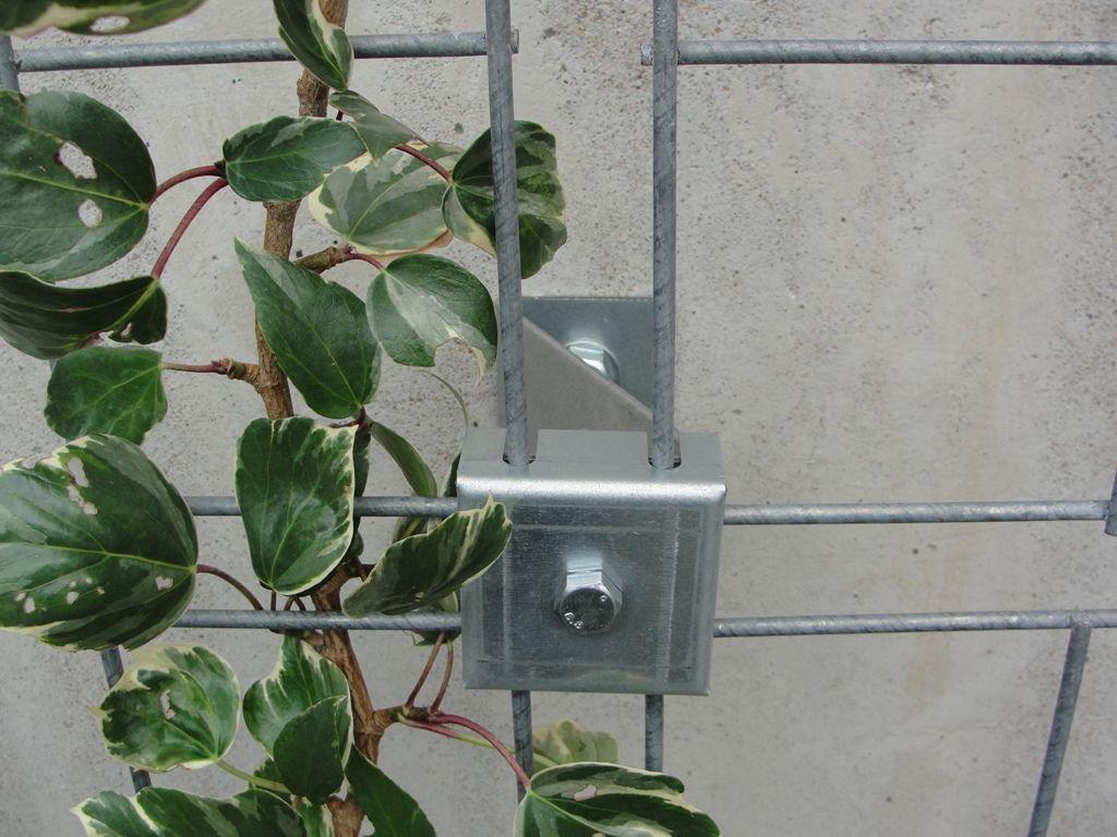 Grille de support en acier galvanisé pour plante grimpante - végégrille