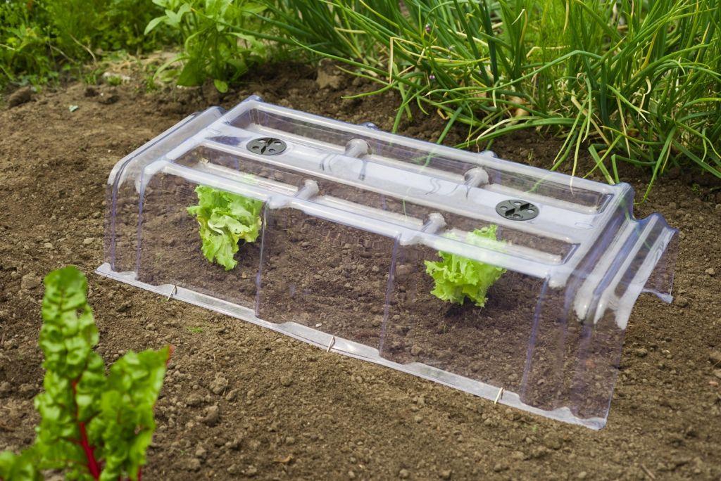 tunnel de for age rigide translucide jardinet. Black Bedroom Furniture Sets. Home Design Ideas