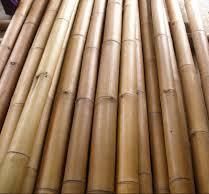 bambou d co de chine nagoya 240cm d 60 80mm jardinet. Black Bedroom Furniture Sets. Home Design Ideas