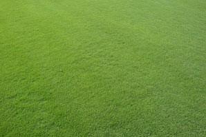 gazon excellence green carneau n 1500 jardinet. Black Bedroom Furniture Sets. Home Design Ideas