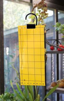 feuilles de glu jaune contre mouches et aleurodes jardinet. Black Bedroom Furniture Sets. Home Design Ideas